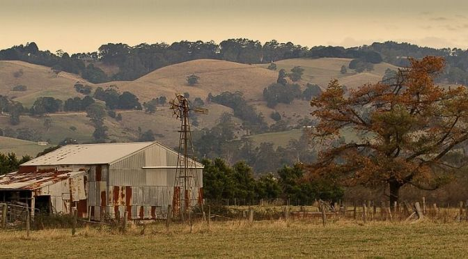 5 Key Takeaways for Australia's Developing Agtech Scene from the Digital Disruption in Agriculture Event