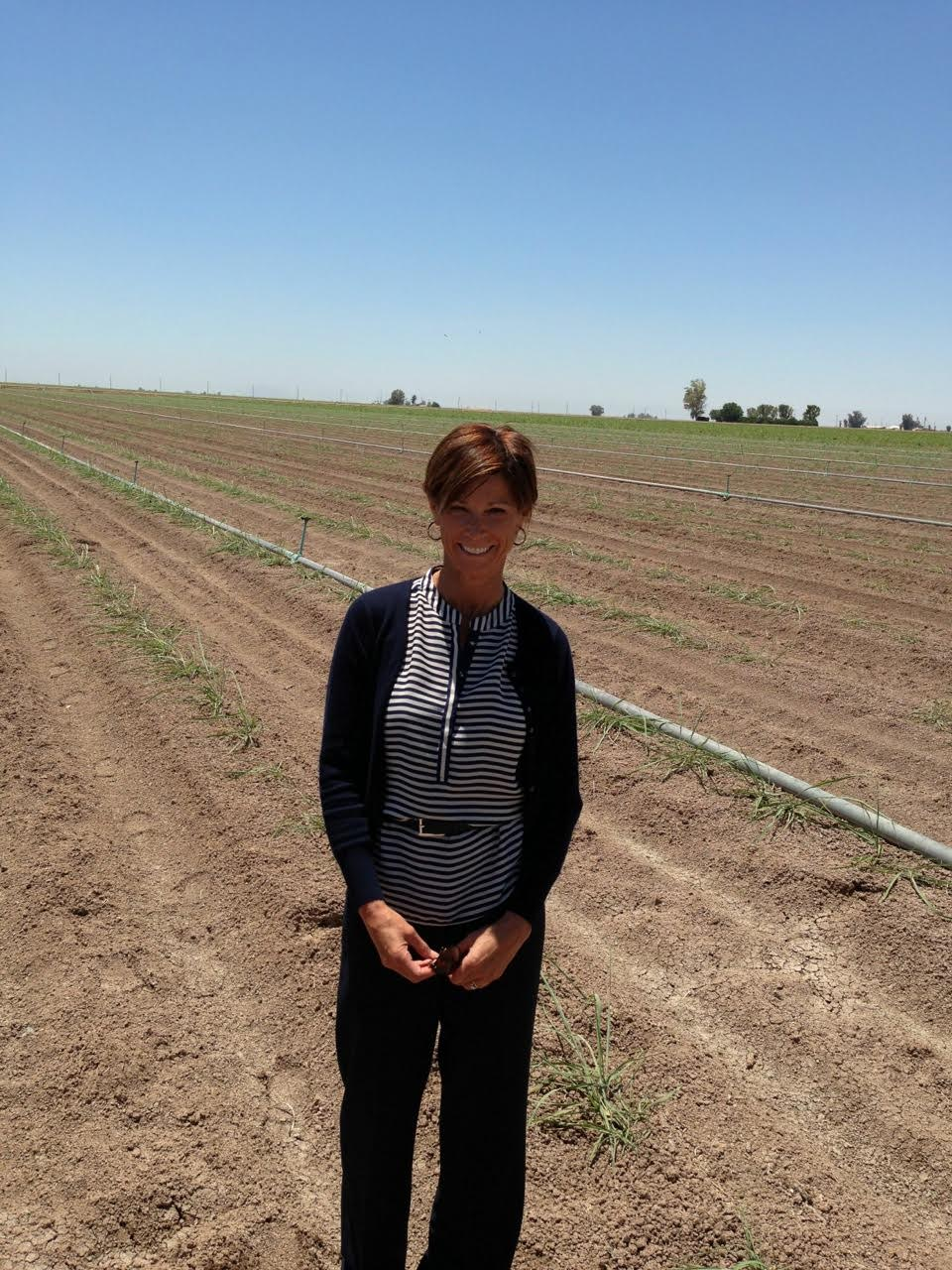 The idea of increasing agricultural efficiency applies to traditional - Vonnie Estes