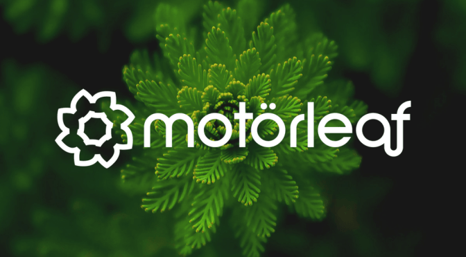 How motorleaf is Helping Automate Indoor Farming
