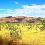 One Entrepreneur's Mission to Promote Rural Agriculture Innovation in Australia