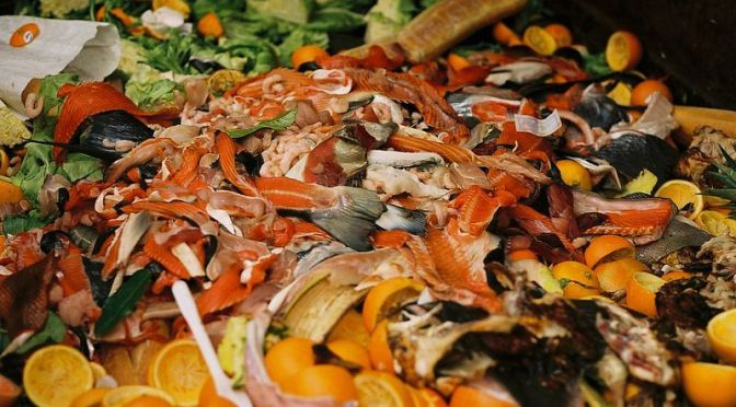 The Billion Dollar Food Waste Market Investors Are Missing