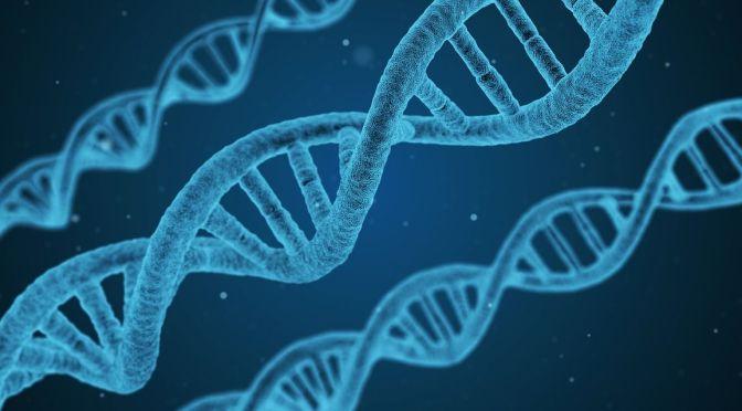 Agtech Funding Sheet: Gene-editing, Food Waste, Insects, Algae, Impact, Biotech, Farmland, more