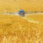 Yagro Raises $500k Seed Round for Online Marketplace for Agri Inputs – exclusive