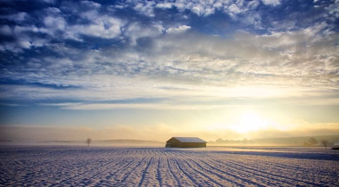 Dreaming of an Agritech New Year: Industry Wishes for 2017
