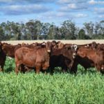 Australian Government Backs Fintech Startup Aimed at Increasing Farmer Net Wealth