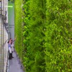 Vertical Farming Startup Plenty Acquires Bright Agrotech to Scale