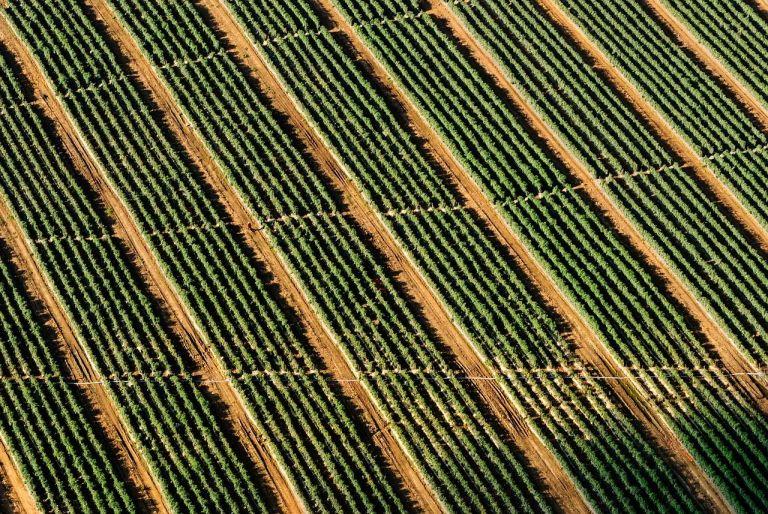 Society of Precision Agriculture Australia