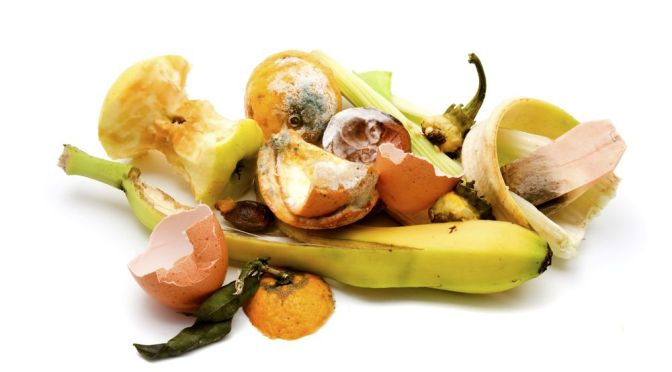 Using Data to Unlock Opportunity from Food Waste
