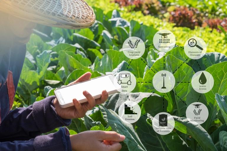 farm data