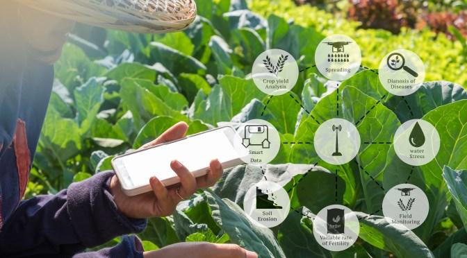 Putting a Price on Farm Data
