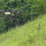 Japan's Nileworks Raises $7.1m for Crop Spraying Drones