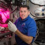 Agriculture in Space Expert: Deep Horticultural Expertise is Needed for Vertical Farming to Succeed