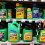 Glyphosate Gets EU Greenlight for Five More Years