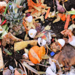 WISErg Brings Funding Total to $57m for Food Waste Tech with Series C