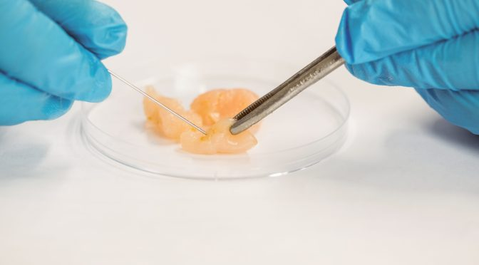Israeli Cultured Meat Startup SuperMeat Raises $3m Seed Round