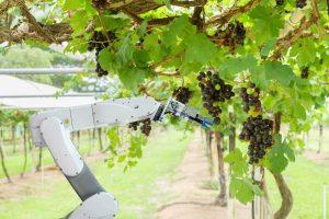 harvesting robotics