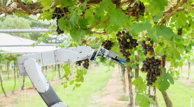 Harvesting Robotics Market to Reach $5.5bn From Early Adopters Alone – Report