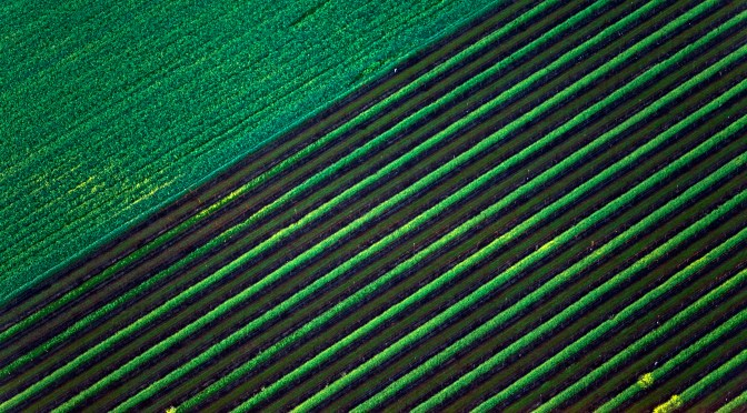 Remote Sensing Startup Skycision Raises $1.1m Seed from Rural America Ag Innovation Fund