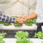 Contain Inc Launches First Insurance Service for Indoor Farmers