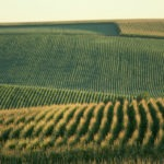Farmland Investor on Agtech: 'A Lot of People Overpromise and Underdeliver'