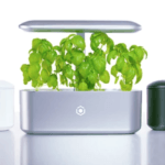 Ava Technologies Raises $2.2m Seed Funding for Smart Indoor Gardens