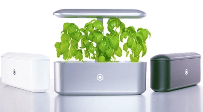 Ava Technologies Raises $2m Seed Funding for Smart Indoor Gardens