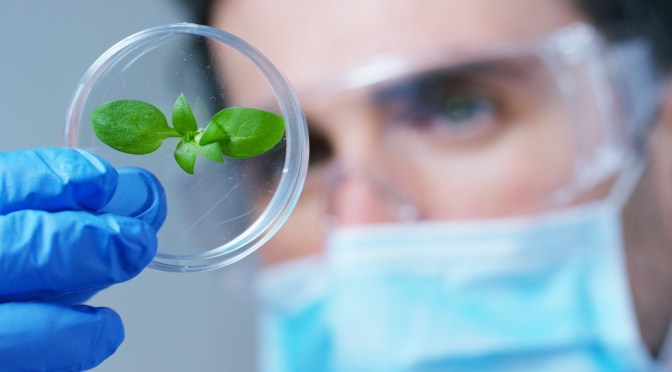 "Flagship's Latest Venture Inari Raises $40m Series B to ""Transform Plant Breeding"""