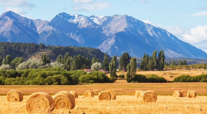 How Argentina is Creating an Agtech Startup Ecosystem