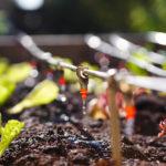 How Jain USA Has Quietly Built a High-Tech Irrigation Platform Through Acquisitions
