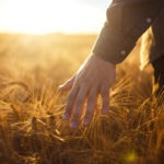 It's Time to Plant the Seeds of Growth in Sustainable Agriculture
