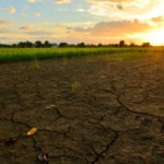 Syngenta CEO: Climate Change Will Be Our Biggest Challenge