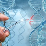 For Elo Life Systems, Gene Editing is About Giving Consumers Exactly What They Want