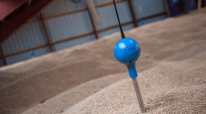 Why Grain IoT Startup Telesense Acquired Webstech