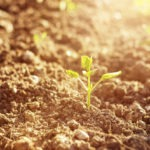 FoodShot Announces Winners of Soil 3.0 Challenge inc Trace Genomics & Carbon Sequestration Measurement