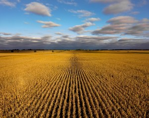 farmlandfinder