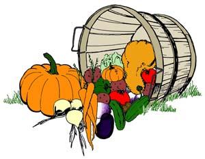 fall gardening guide