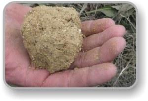 Stabilizing soil OMC testing