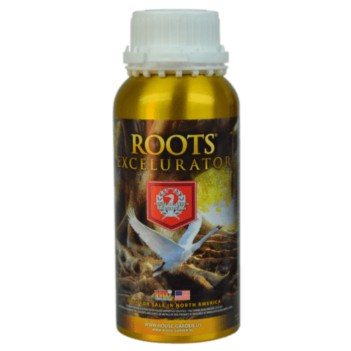 Roots Excelurator – Gold