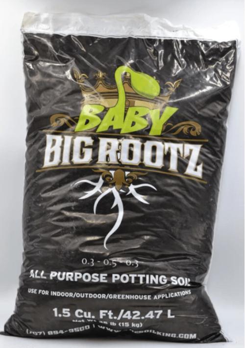 Baby Rootz
