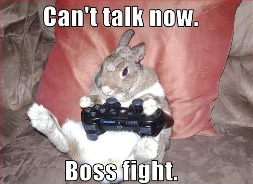 this bunny is bad at getting out of the fire. not even touching the sticks.