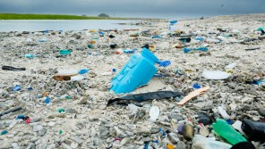 Swimming in a sea of plastic