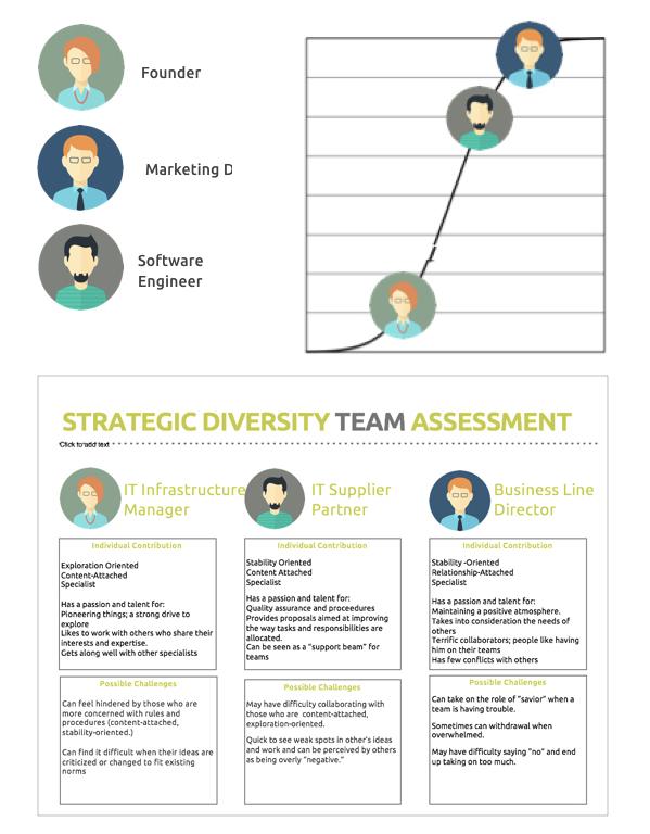 Strategic Diversity Infographic