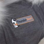 Thundershirt & Rabatkode | Nytårstræning