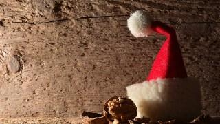 扮演:狂野聖誕夜