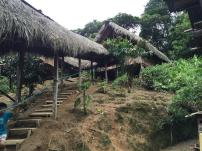 Treehouses we stayed in when we visited the Amazon Rainforest in Ecuador