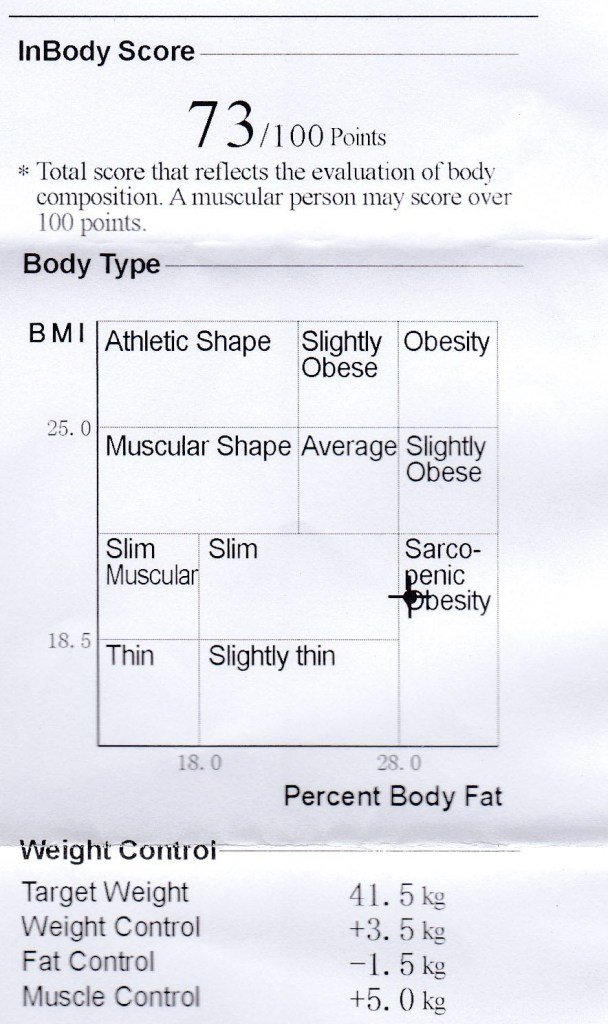 body analysis skinny fat
