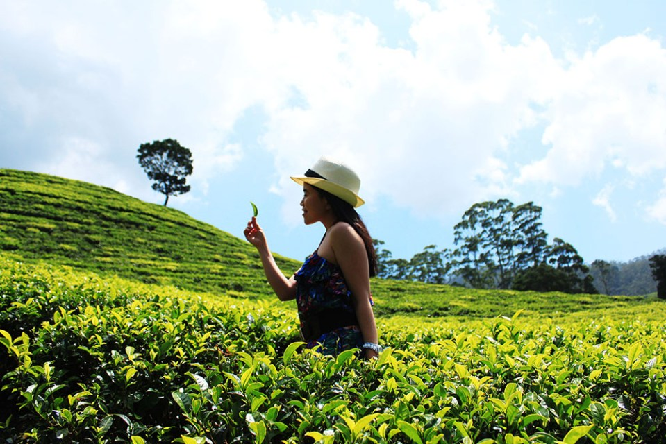 woman in the middle of sri lanka fea field lonely planet hottest destination 2019