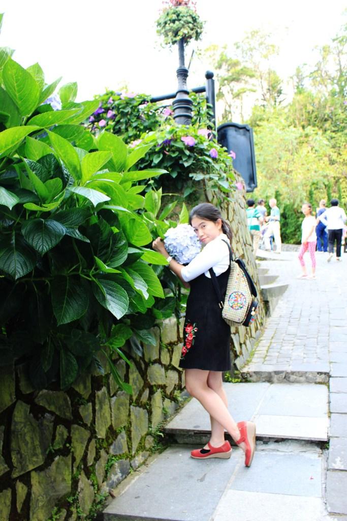 la vie en rose a girl hugging flowers in ba na hills vietnam