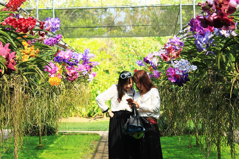 la vie en rose female tourists at Bai Orchid and Butterfly Farm Thailand