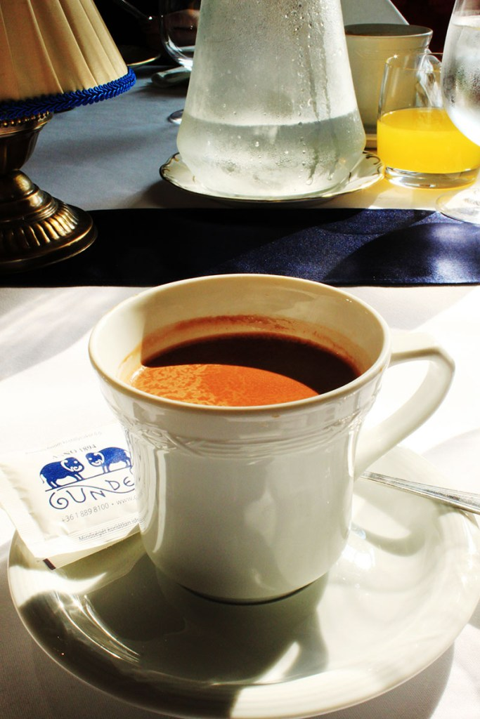 Gundel Budapest famous homemade hot chocolate agirlnamedclara